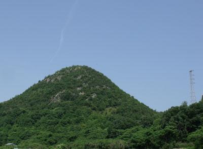 01岩倉山とミサゴのお家.jpg
