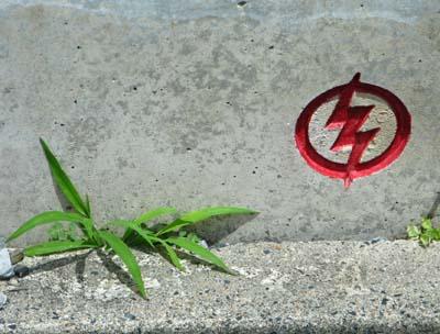 01赤いマークと緑の野芝.jpg