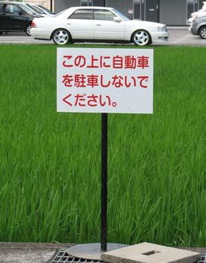 この上駐車禁止.jpg